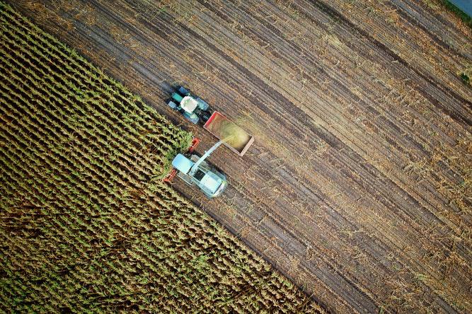 Produttori agricoli in regime di esonero